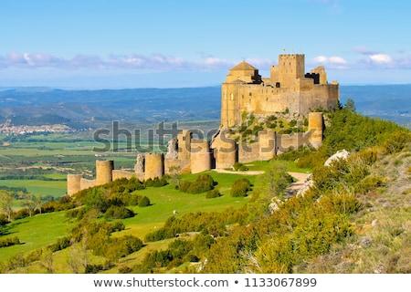 ストックフォト: 城 · スペイン · 中世 · 家 · 森林 · 壁