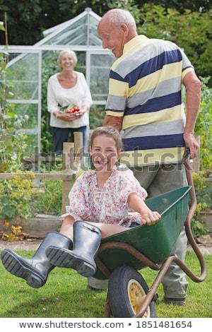 Woman asleep in wheelbarrow Stock photo © photography33