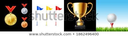 golf · delik · sarı · bayrak · golf · sahası · gökyüzü - stok fotoğraf © goce