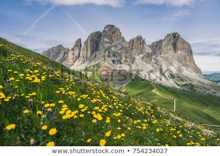 természetjáró · hegy · nő · alpesi · ösvény · sport - stock fotó © antonio-s