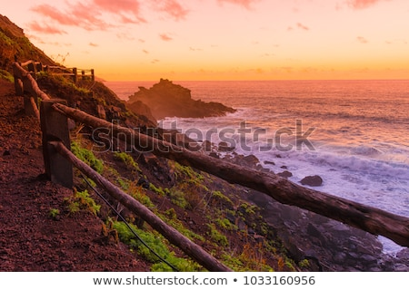Blue sky sea of clouds in La Palma  Stock photo © lunamarina