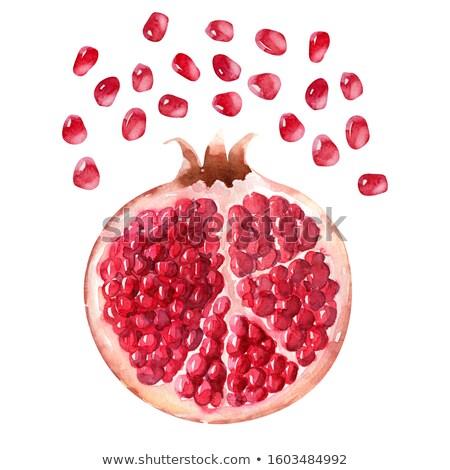 pomegranate pips stock photo © tish1