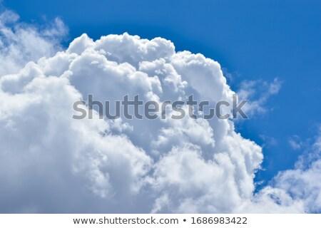 Dense cumulus clouds. Stock photo © iofoto