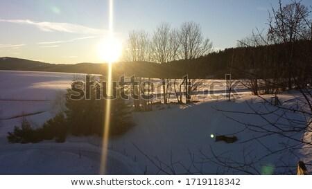 Lansdcape in winter at sunrise  Stock photo © CaptureLight