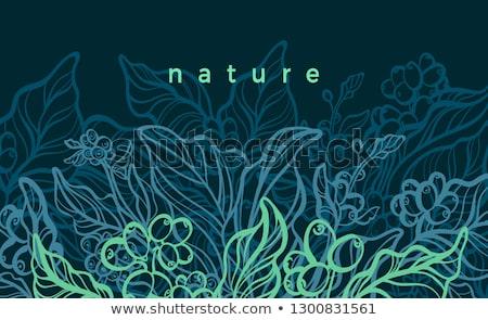 Rami cedere natura foglia sfondo verde Foto d'archivio © goce