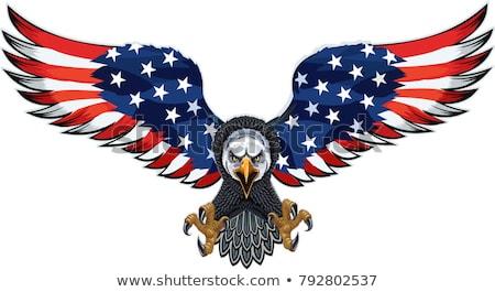 Aigle patriote cartoon illustration vecteur Photo stock © derocz