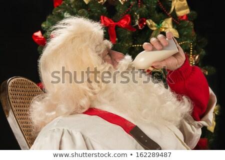 kerstman · vergadering · schommelstoel · kerstboom · home · mode - stockfoto © hasloo