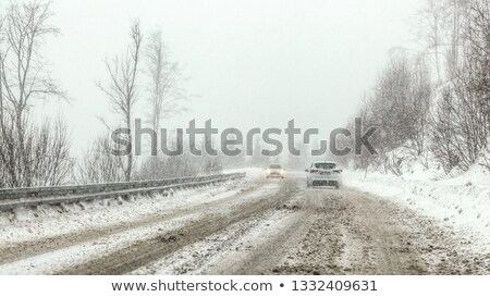 Country Road During a Snowstorm Stock photo © aetb