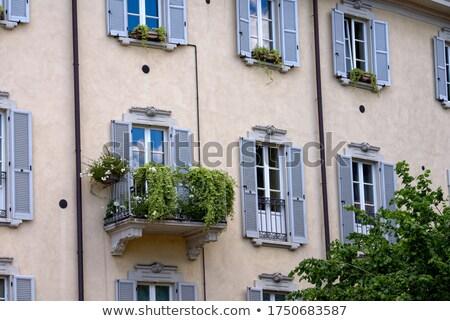 здании · фасад · красивой · балкона · полный · цветок - Сток-фото © nejron