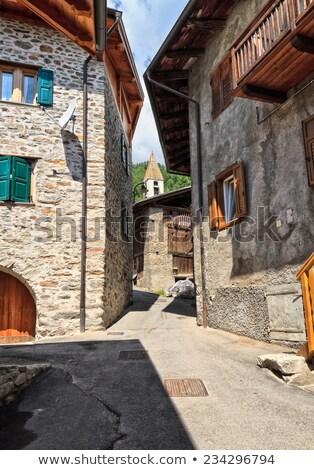 trentino   pejo valley overview stock photo © antonio-s