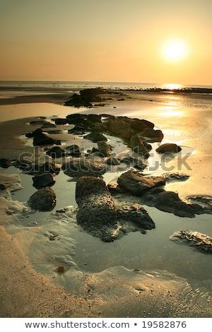Ilha Bangladesh paisagem água mar Foto stock © bdspn