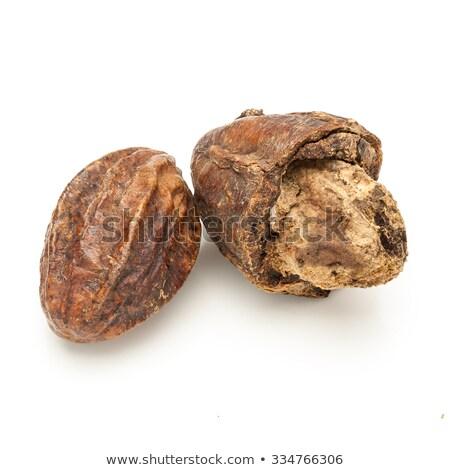 Macro closeup of a Organic Inknut. Stock photo © ziprashantzi