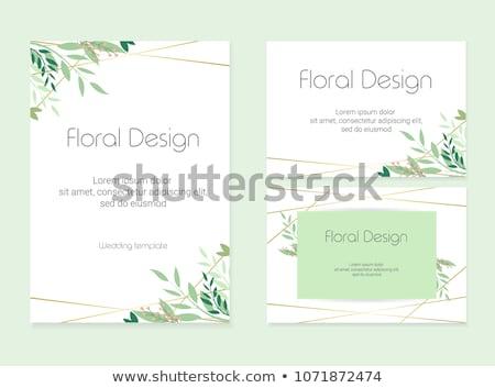 dahlia · bloem · papier · label · bloem · vector · boekje - stockfoto © beholdereye