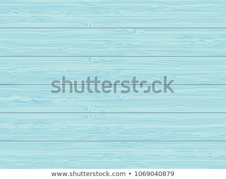Blue vector wooden grunge texture Stock photo © blumer1979