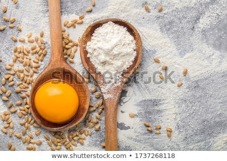 Nyers tojás tojássárgája kanál étel Stock fotó © Digifoodstock