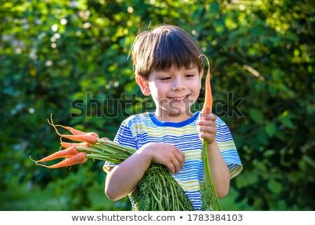 少年 ニンジン 食べ 新鮮な 孤立した 白 ストックフォト © grafvision