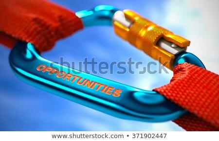 Blue Carabine Hook with Text Success. Stock photo © tashatuvango