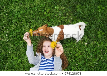 Little girl lying on the grass with her puppy Stock photo © ozgur