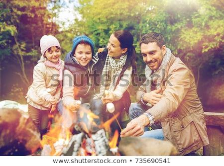 père · en · fils · guimauve · feu · de · camp · camping · tourisme · randonnée - photo stock © dolgachov