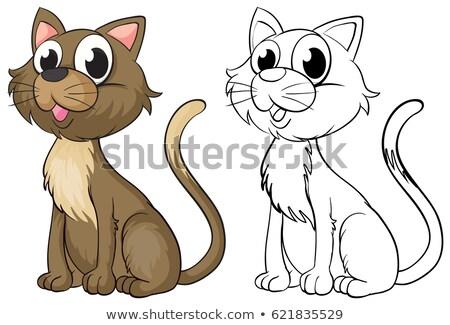 Doodles drafting animal for cat Stock photo © colematt