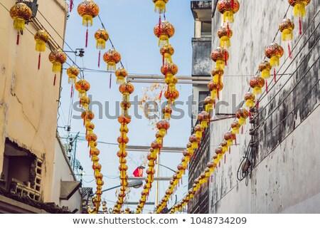 bloem · gras · chinese · woord · geïsoleerd · witte - stockfoto © galitskaya
