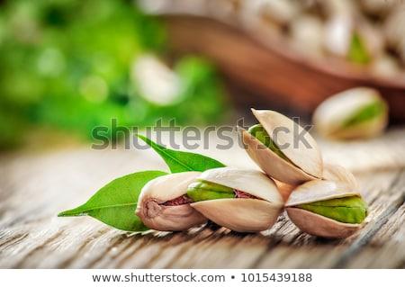 Pisztácia diók monokróm izolált egész vektor Stock fotó © frescomovie