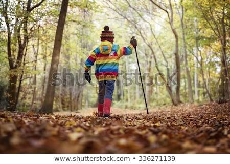 детей походов из лесу иллюстрация девушки Сток-фото © colematt