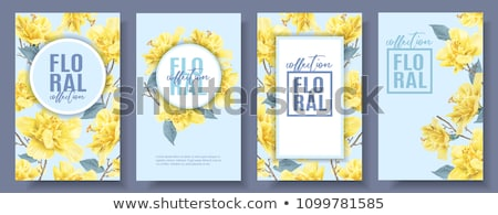 Stock fotó: Keret · sablon · sárga · virágok · illusztráció · tavasz · természet