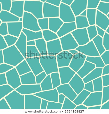 Stone plate paving Stock photo © boggy