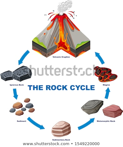 Diagram tonen rock cyclus illustratie wereld Stockfoto © bluering
