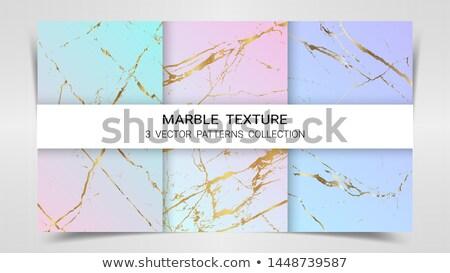 Prêmio conjunto dourado padrões pastel cor Foto stock © SArts
