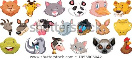Set unterschiedlich cute Kopf riesige Stock foto © bluering