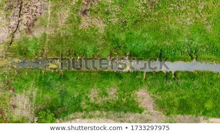 A Small Stream Flows Through a Grassy Green Field Stock photo © Frankljr