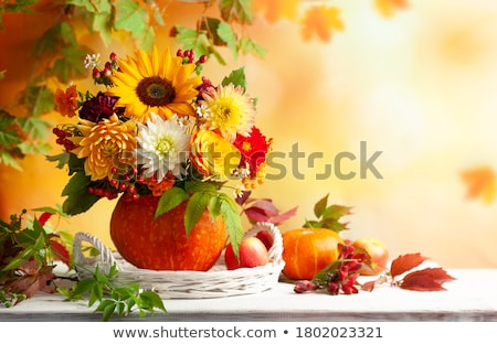 the autumn flowers and red apples stock photo © traven