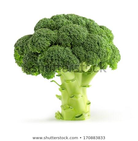 twee · broccoli · naast · geïsoleerd · witte · voedsel - stockfoto © zhekos