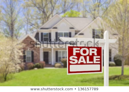 Real Estate sign and house Stock photo © luissantos84