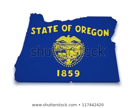 Kaart Oregon 3D vorm gekleurd Blauw Stockfoto © NiroDesign