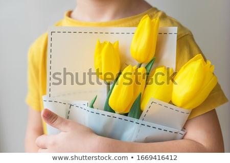 Giallo tulipani foglie verdi Foto d'archivio © juniart
