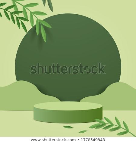 Groene plant blad groen blad Stockfoto © stocker