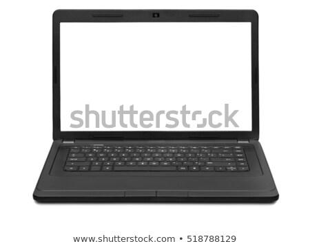 Leiderschap moderne laptop scherm verschillend kantoor Stockfoto © tashatuvango