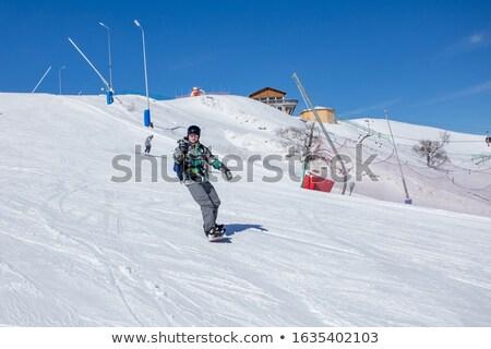 scénique · montagne · ski · pin · arbres · oeil - photo stock © iofoto