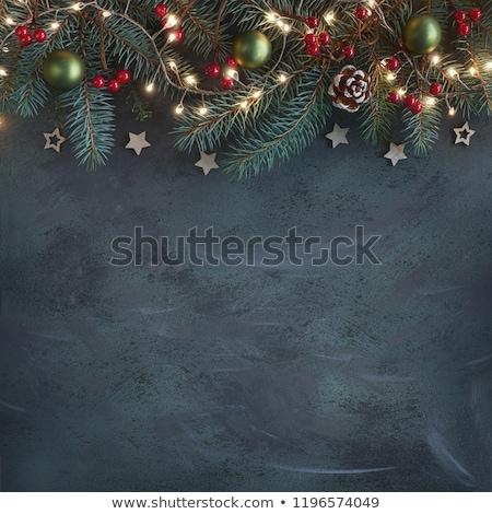Navidad chuchería plata rama superficial campo Foto stock © dariazu
