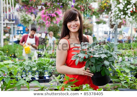 Stock photo: Portrait of man with woman holding potted plant