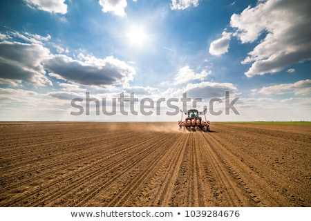 Farmer planting in the field Stock photo © colematt
