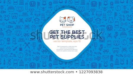 кошки · ухода · ПЭТ · магазин · красочный · иконки - Сток-фото © netkov1