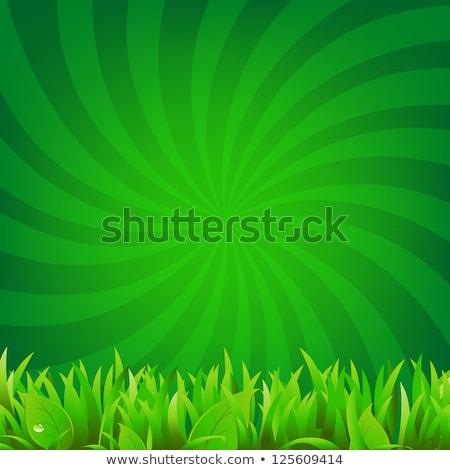 Sun or summer sunburst. Gradient shiny Ray Beam background. Stock vector illustration Stock photo © kyryloff