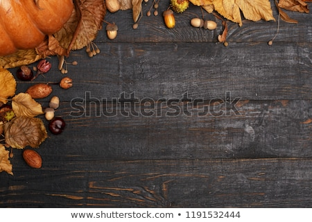 autumn background with dry colorful leaves ripe pumpkins and black paper bats stock photo © pressmaster