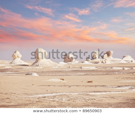 landscape of the white desert in egypt stock photo © bbbar