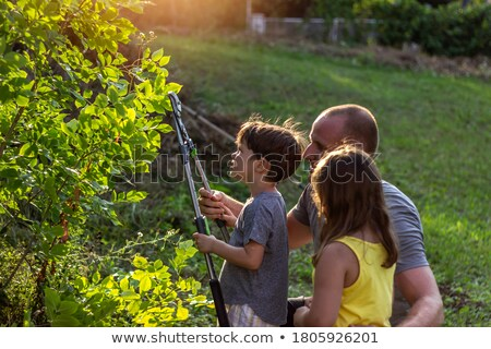 Scene with three kids working on the farm Stock photo © bluering