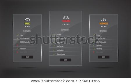 Abonnement plannen web sjabloon ontwerp Stockfoto © SArts